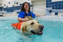 Wendy Davies and dog in pool
