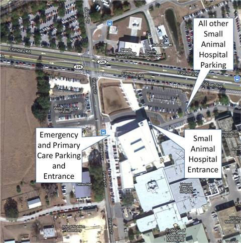 Overhead picture of Samll Animal Hospital