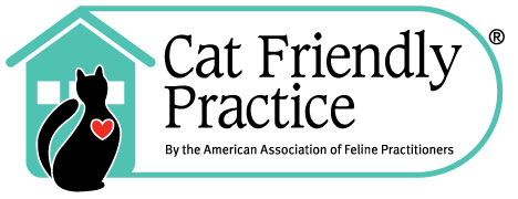Image result for cat friendly practice