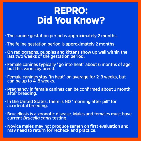 repro facts